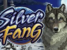 Играть в Вулкан Делюкс в Silver Fang